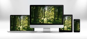 responsive themes and templates
